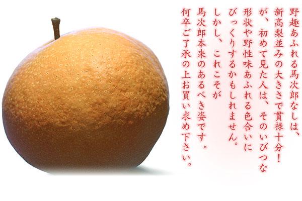 かなり個性的な形の梨です。ご了承下さい。