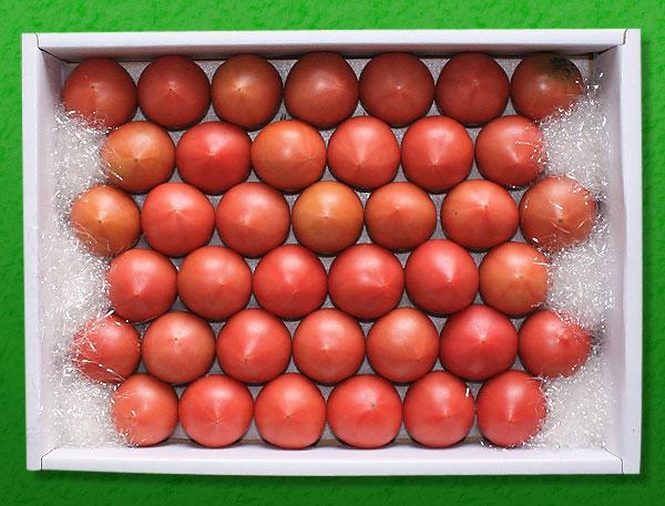 春野産フルーツトマトを高知から