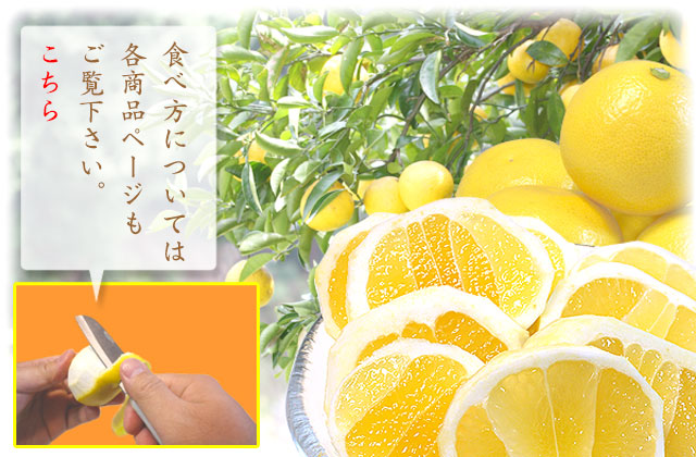 小夏ちゃんの食べ方については、各商品ページをご覧下さい。