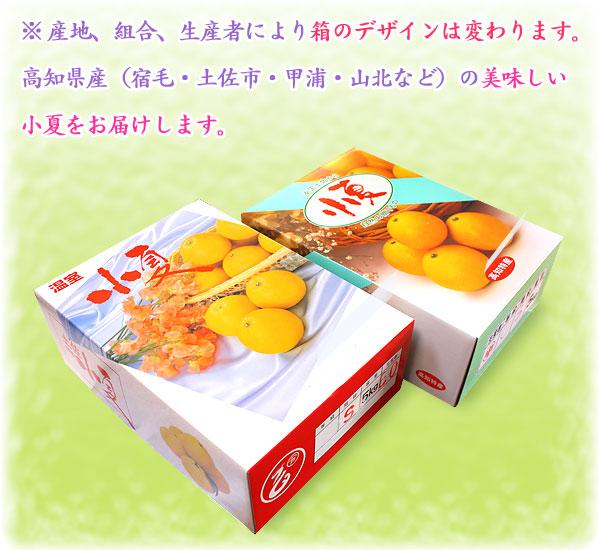 生産者や組合により、箱のデザインは変わります。