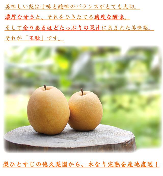 おいしい梨は甘味と酸味のバランスが大切です