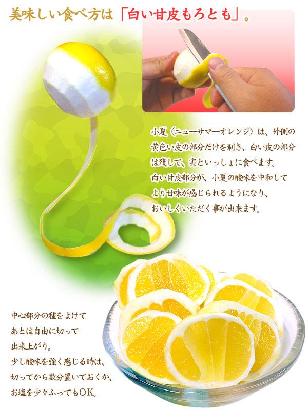 小夏(ハウス栽培品)の美味しい食べ方