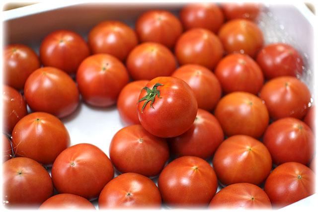 夜須(やす)トマト