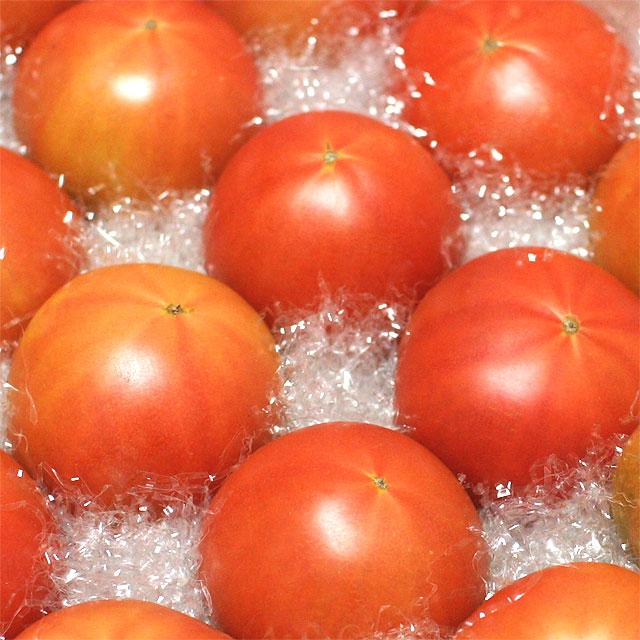 てっぺんトマト・アップ