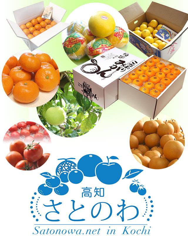 「さとのわ」は、果物を中心とした高知の特産品をお届けするネットショップです。