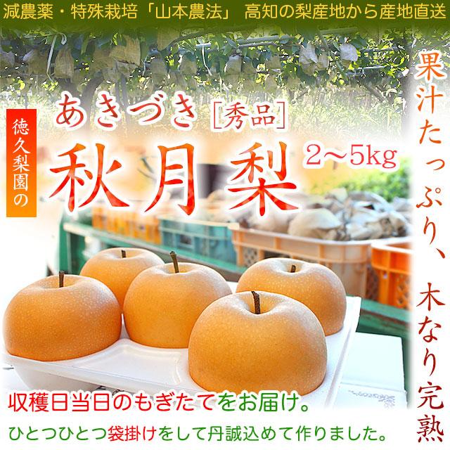 秋月(あきづき)梨通販・美味しい梨・産地直送