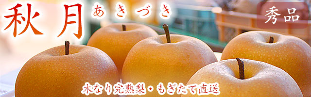 秋月(あきづき)・木なり完熟梨・もぎたて産地直送