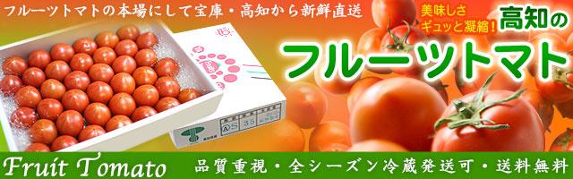 本場・高知産フルーツトマト