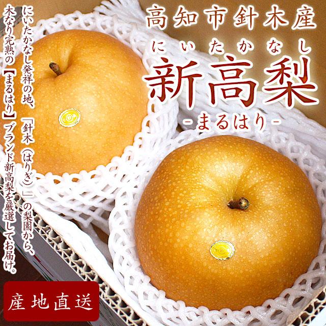 針木産・新高梨(にいたかなし)・トップページ