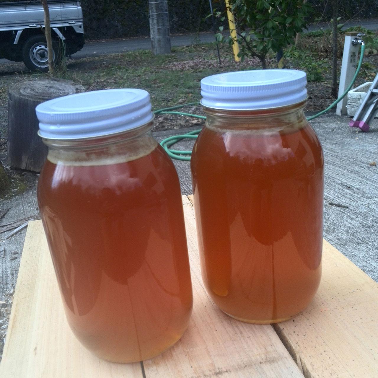 日本蜜蜂の純粋蜂蜜(天然はちみつ)・収穫直後・結晶化していない状態