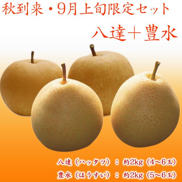 八達+豊水 梨 セット