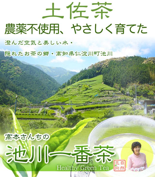 隠れたお茶の名産地、高知県仁淀川町・池川の一番茶