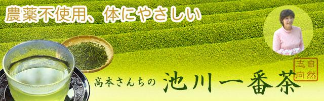 高知県仁淀川町池川・高本さんちの池川一番茶