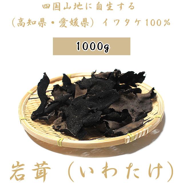 【送料無料】岩茸(いわたけ)・四国山地・石鎚山系イワタケ100%(高知県産・愛媛県産)・1kg