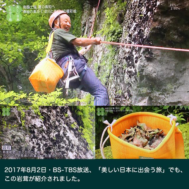 この岩茸が、TVで紹介されました。
