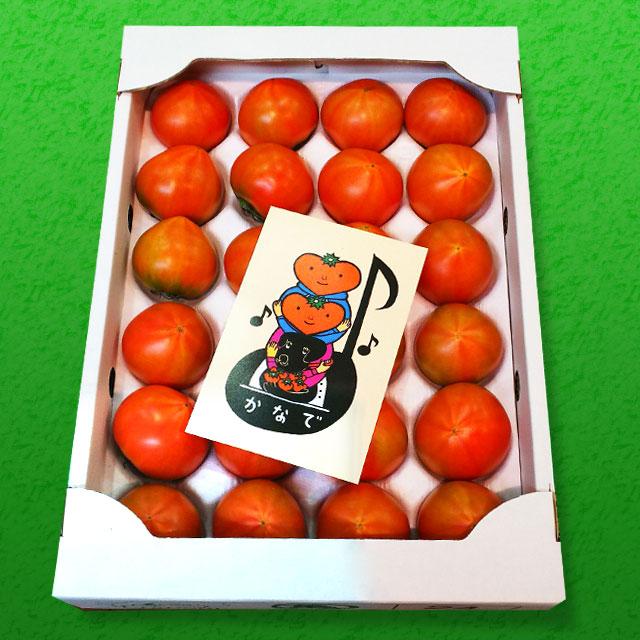 「かなでとまと」は、味のハーモニー豊かな濃厚トマトです。