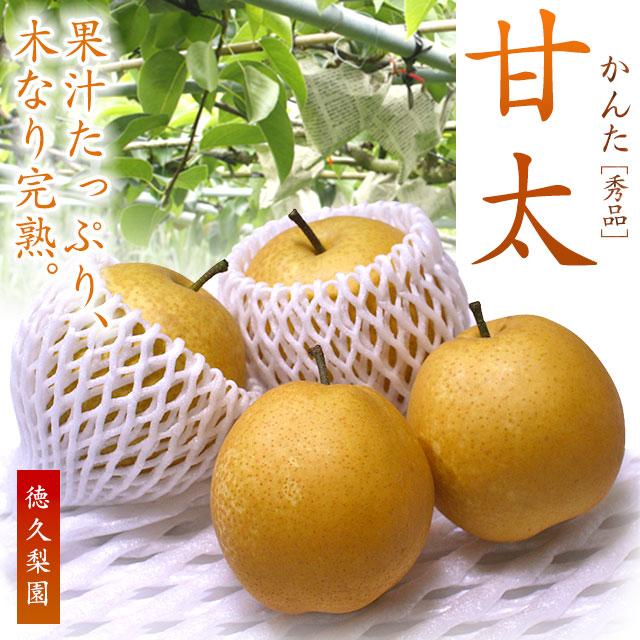 甘太(かんた)梨・2kg〜4kg・木なり完熟・産地直送