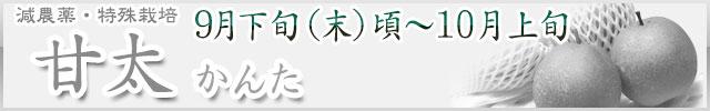 甘太(かんた)・木なり完熟梨・産地直送