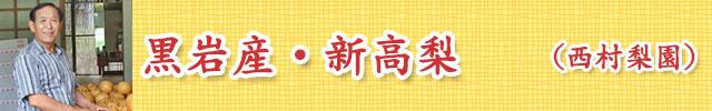 西村清勇梨園 -高知県高岡郡佐川町黒岩産・新高梨-