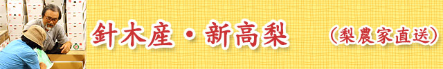 植田省三梨園 -高知県高知市針木産・新高梨-