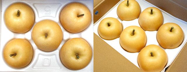 幸水(こうすい)梨・5〜6玉
