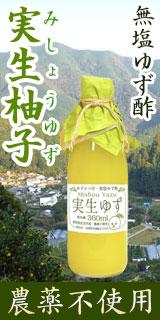 ゆずタマ印の実生柚子(みしょうゆず)