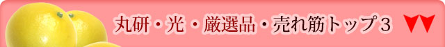 丸研(まるけん)・光(ひかり)・厳選品・売れ筋トップ3はこちら↓