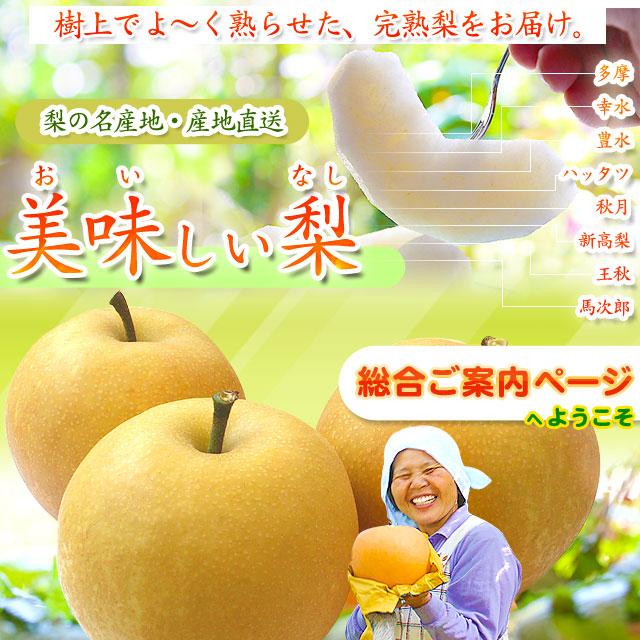 美味梨(びみなし)・総合ご案内ページへようこそ!