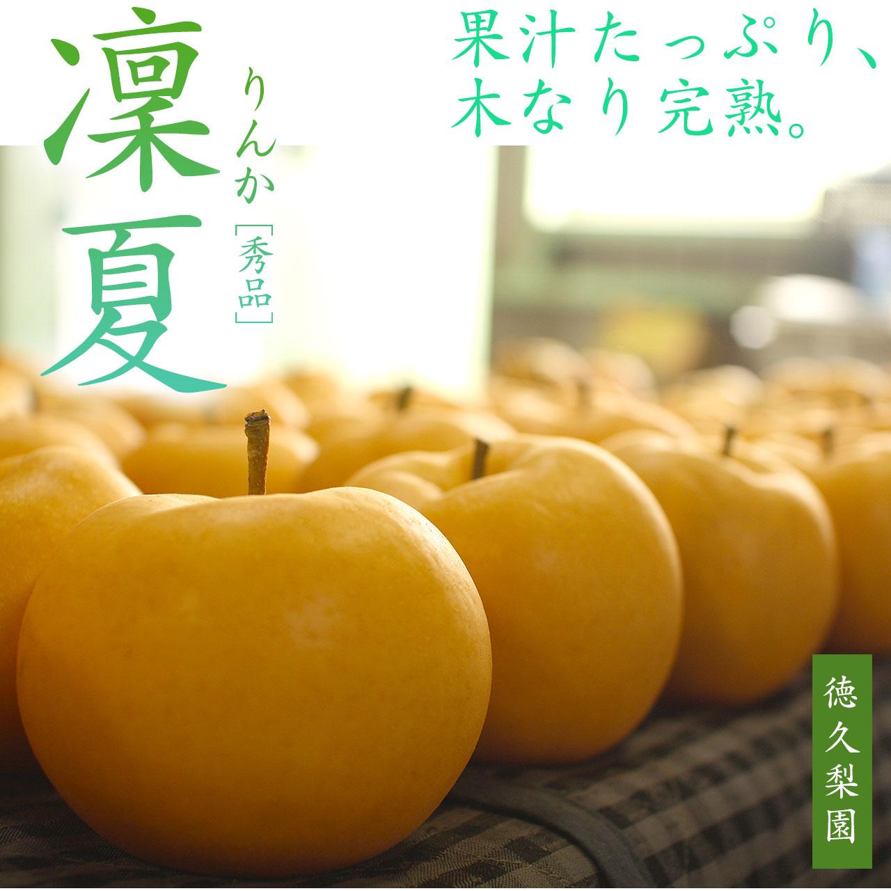 凜夏(りんか) 梨