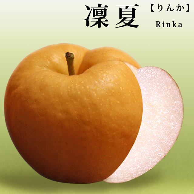 凜夏(りんか)梨とは - 概要