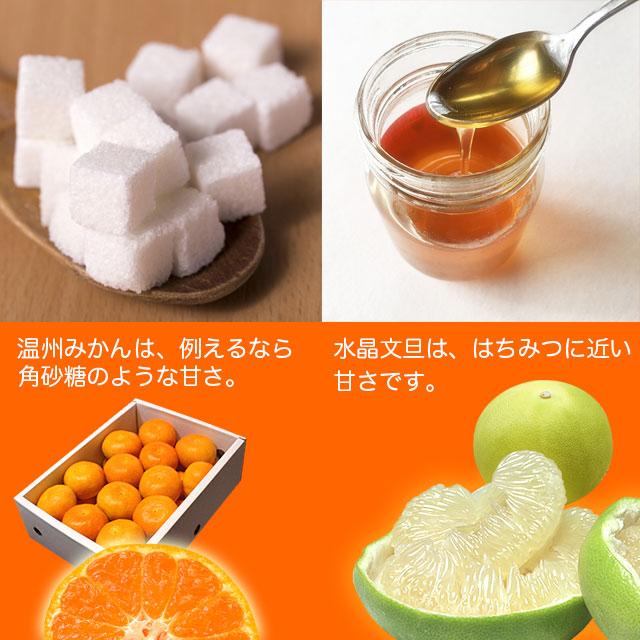 水晶文旦と温州みかん・味の違い