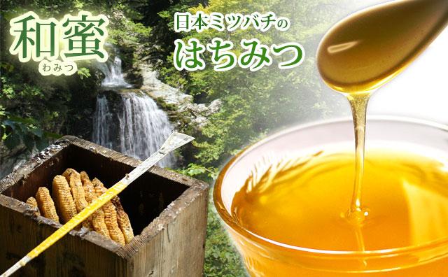 日本ミツバチの蜂蜜(はちみつ)・和蜜(わみつ)