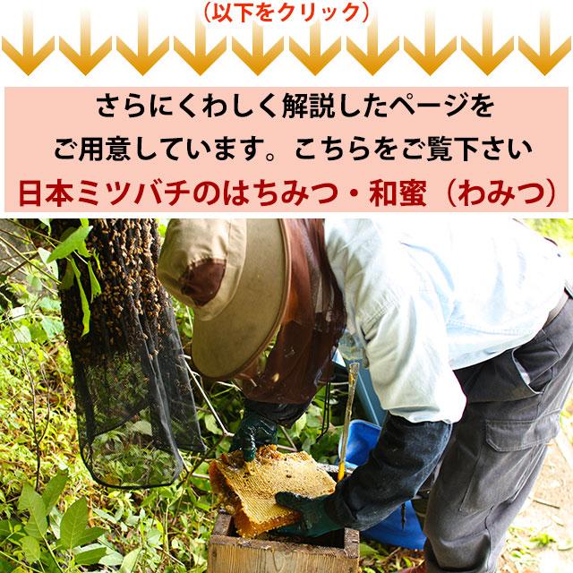 日本ミツバチの蜂蜜(はちみつ)・和蜜の通販ページへ