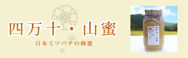 四万十 山蜜・日本ミツバチの蜂蜜(はちみつ)