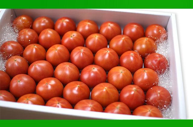 やすトマトは送料無料!