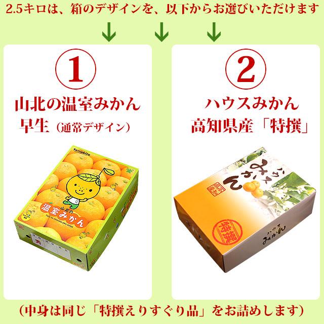 山北の温室みかん・箱のデザインが2種類から選べます。